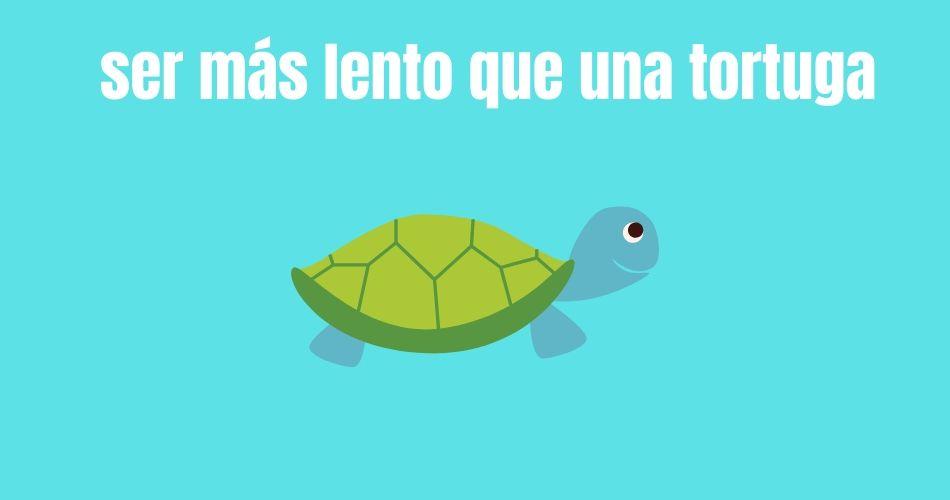 Frase expresión con animales Ser más lento que una tortuga