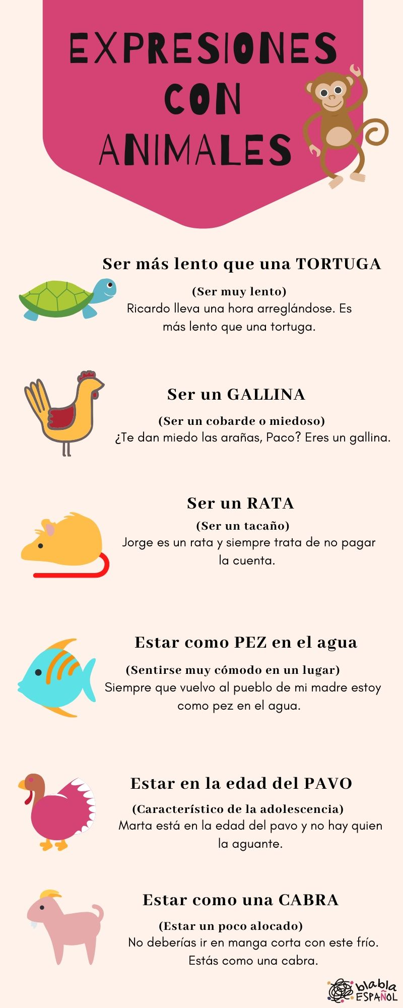 Infografía expresiones animales